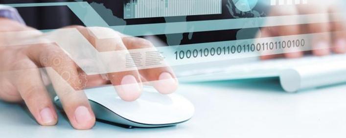 ¿Cómo gestionar los bugs o errores del software?