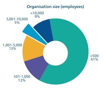 tamaño de organizaciones que usan el BSC